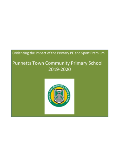 Evidencing the Impact of the Primary PE & Sports Premium 2019-20
