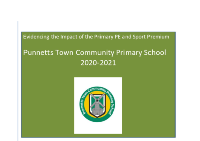 Evidencing the Impact of the Primary PE & Sports Premium 2020-21